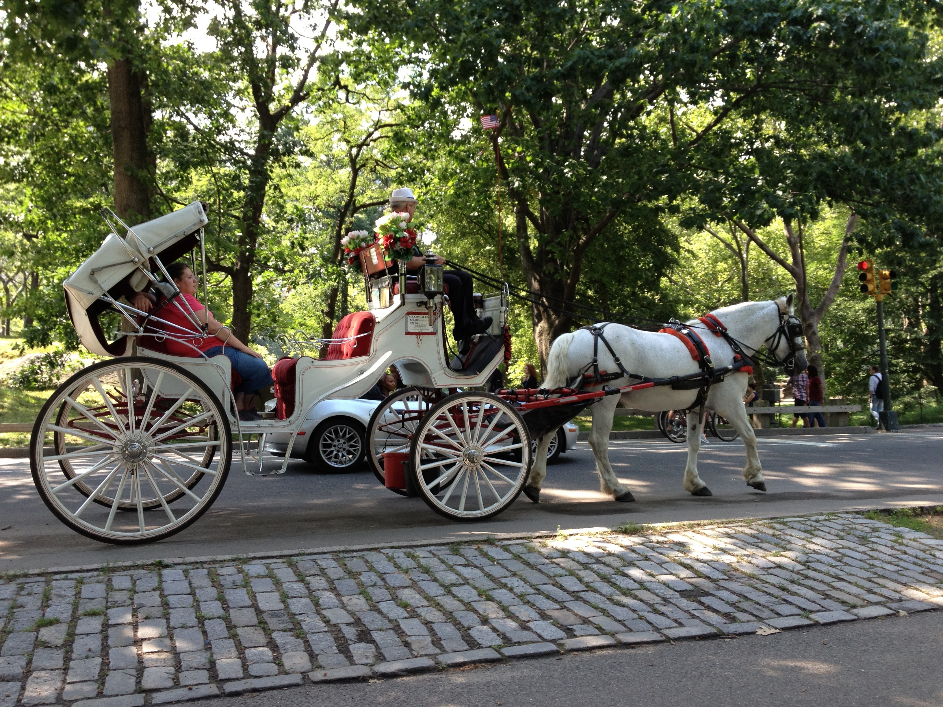 central park carriage ride inspiration images and quotes. Black Bedroom Furniture Sets. Home Design Ideas
